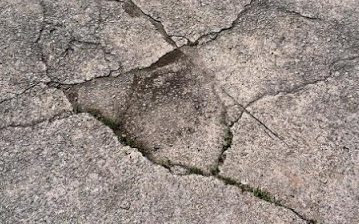 Close up picture of a cracked driveway that needs repaired for a customer in Fort Wayne, IN